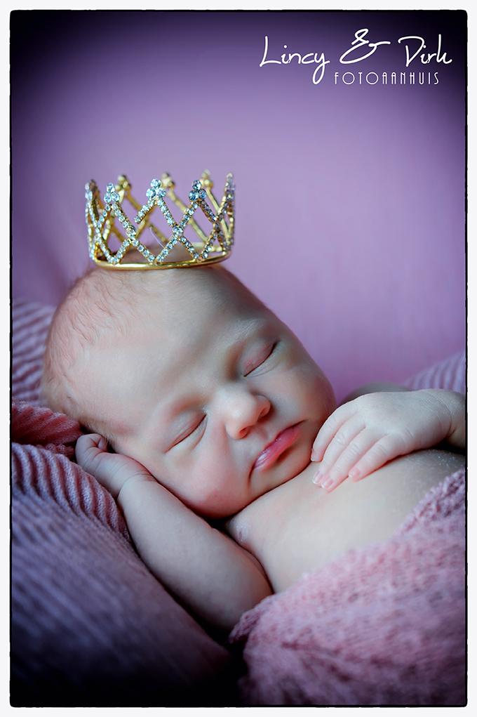 newborn Deerlijk baby fotoshoot