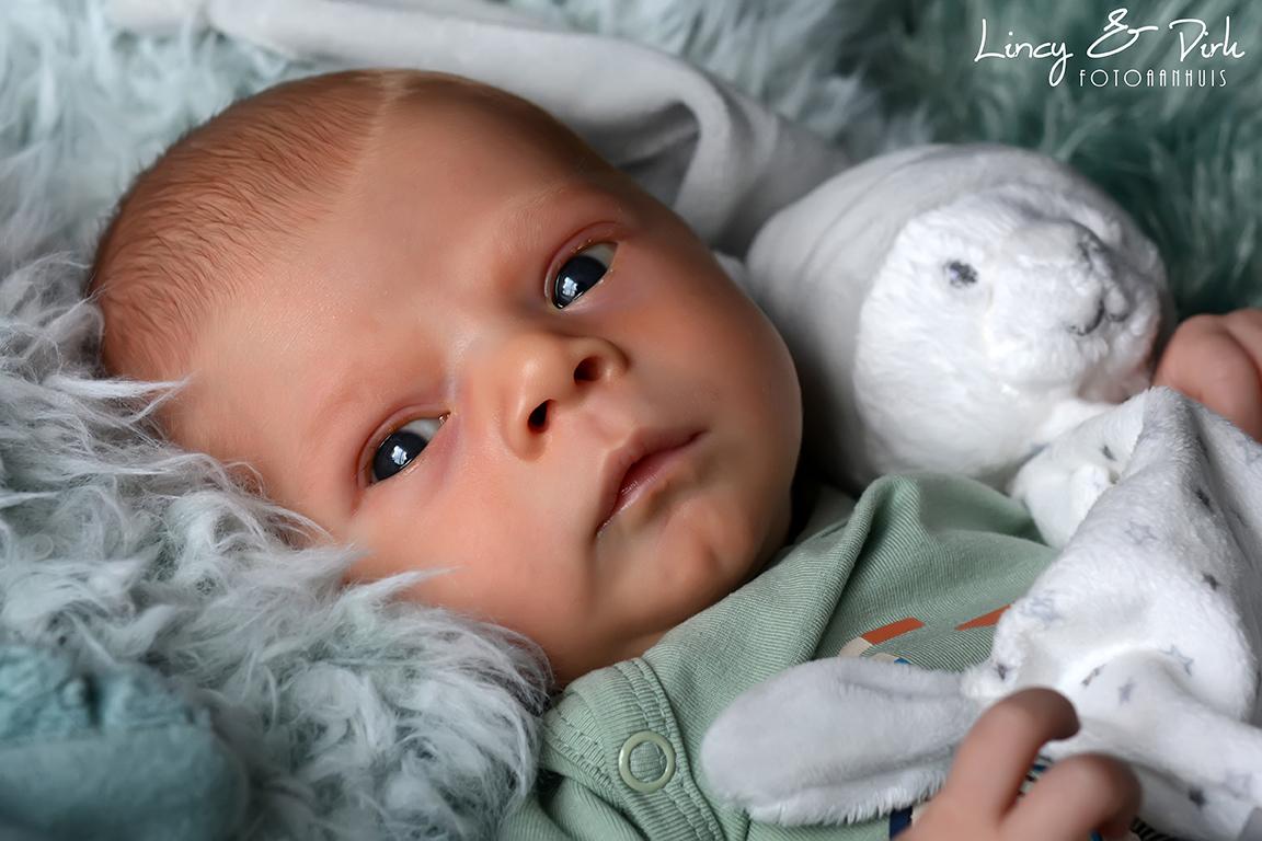 Newborn babyfotoshoot Oostrozebeke - Wielsbeke