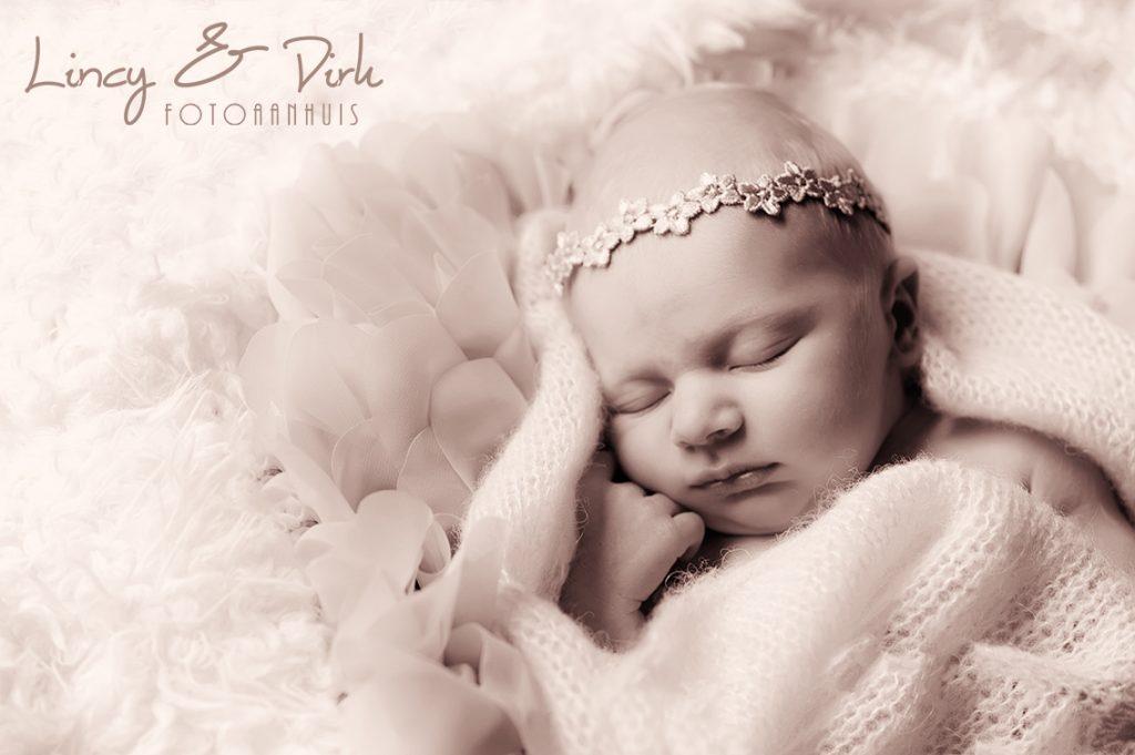 newborn deinze baby fotografie
