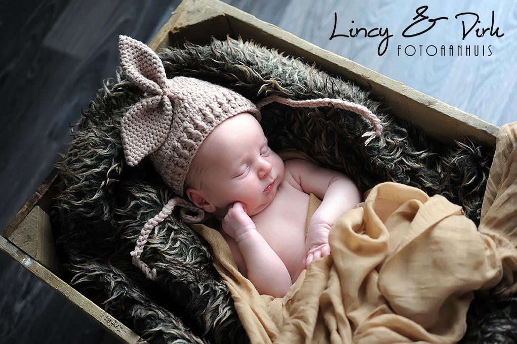 Newborn baby fotoshoot Anzegem