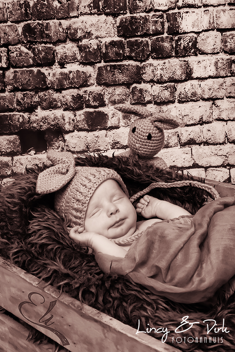Newborn baby fotoshoot Zulte