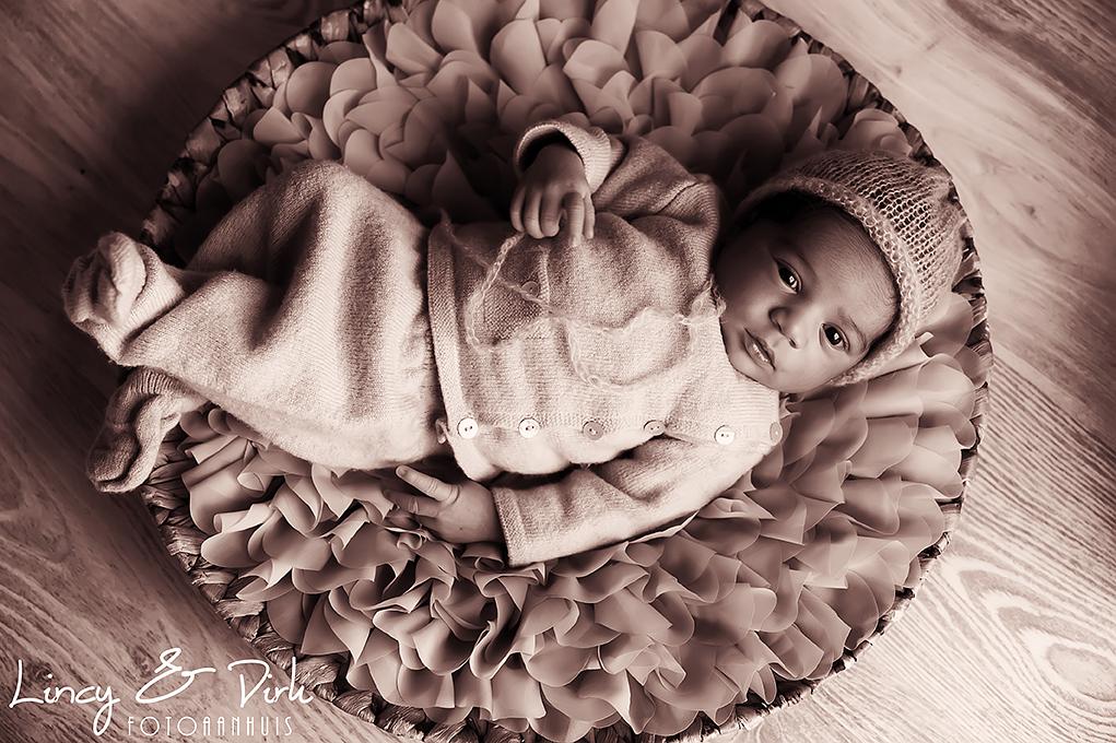 Newborn baby fotografie Vichte