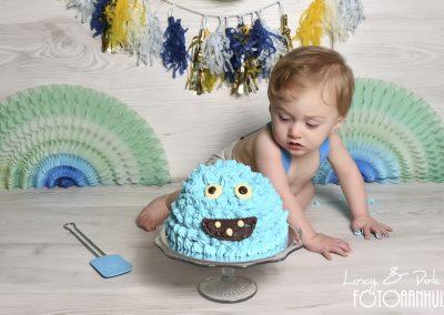 baby Smash Cake Maarkedal