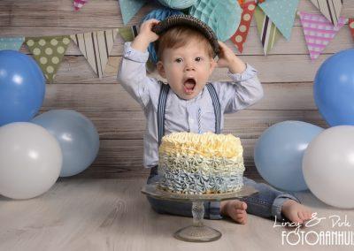 baby Smash Cake Menen
