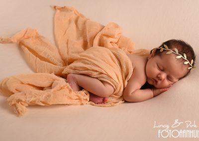 baby fotografie Dentergem
