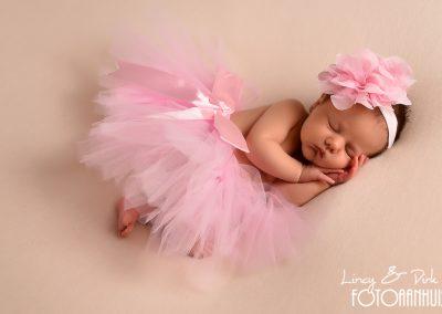 baby fotografie Meulebeke