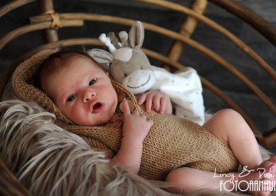 baby fotografie Wortegem-Petegem