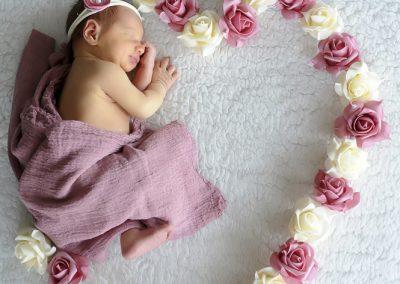 baby fotografie Zulte