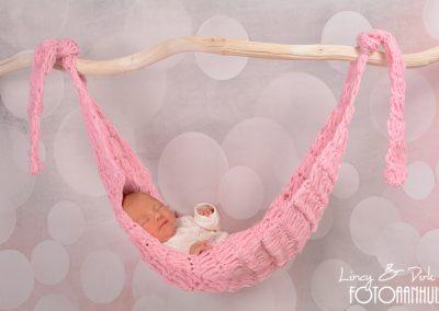 baby fotoshoot newborn Aalst