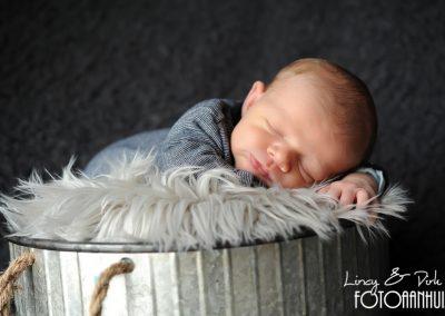 baby fotoshoot newborn Anzegem