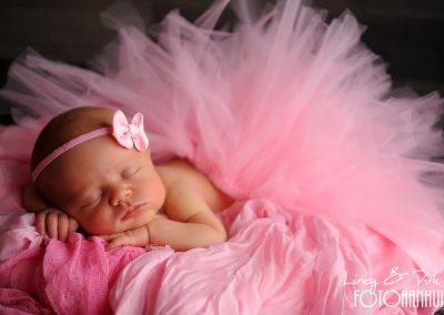 baby fotoshoot newborn Bissegem
