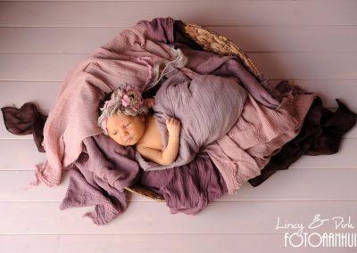 baby fotoshoot newborn Damme