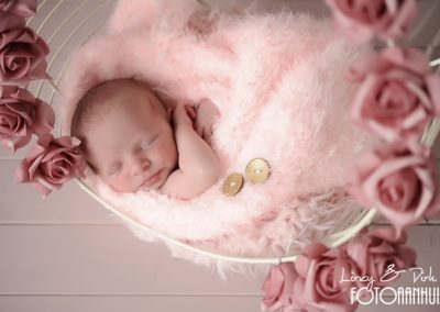 baby fotoshoot newborn West-Vlaanderen