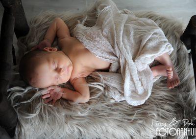 baby fotoshoot newborn Zulte