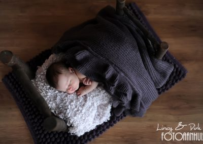 fotografie newborn Anzegem
