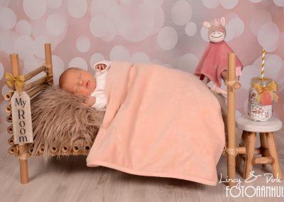 fotografie newborn Avelgem