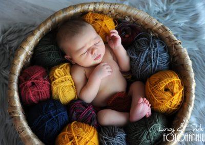fotografie newborn Ieper