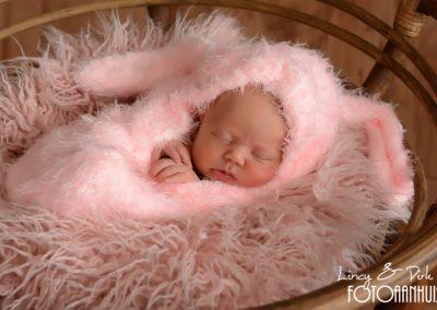 fotografie newborn Kortrijk