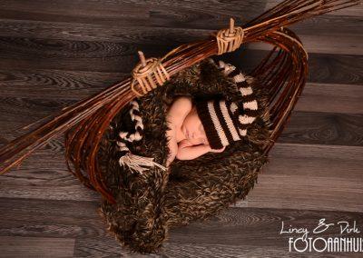 fotografie newborn Kuurne
