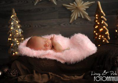 fotografie newborn Menen kerst