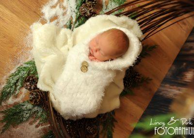 fotografie newborn Oostende kerst