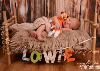 fotografie newborn Oudenaarde