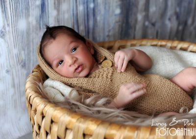 fotografie newborn Waregem