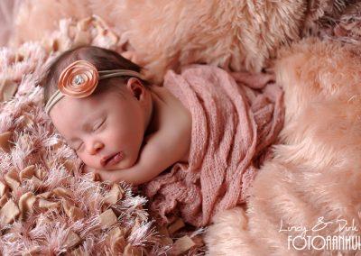 fotografie newborn Wortegem-Petegem