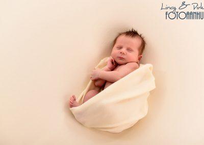 newborn baby fotoshoot Wortegem-Petegem