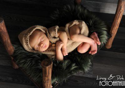 newborn fotografie Ingelmunster