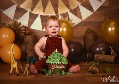 verjaardag verjaardagstaart smash cake dino dinosaurus